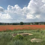One Day in Provence private tour...