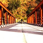 exploring the bridges
