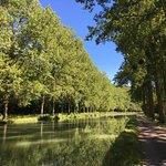 Venez découvrir les magnifiques paysages de Bourgogne à vélo