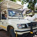Safaris in the Kruger National Park
