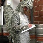 Brewer Wilson loves squirrels