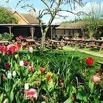 our beautiful walled beer garden