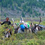 In the North of Mongolia, live the Reindeer people. An isolated and unique people.