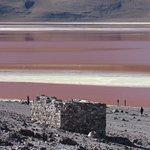 Laguna Colorada Foto