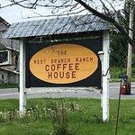 Branch Coffee Photo