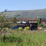 On the protestant side - putting together pallets for the July bonfires