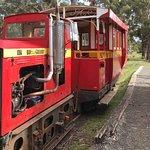 Φωτογραφία: Ida Bay Railway
