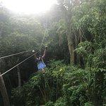 Foto de Zip Fiji