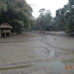 Dried up lake