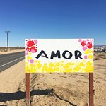 Roadside attraction near Twentynine Palms---sign in Spanish