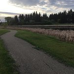 I travel to Killam frequently and recently stayed at the Wagon Wheel. It is so clean, quiet, and