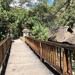 Inkaterra Machu Picchu Pueblo Hotel照片