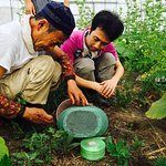 Farming experience 農作業体験