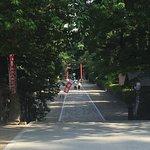 大崎八幡宫照片