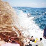 Staffa Tours照片