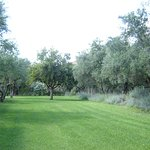Anthos Guest Houses Photo