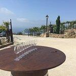 Txakoli Wine tasting in Getaria, Basque country