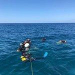 PADI Courses at Arguineguin Reef