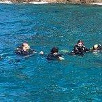 Diving at Bahia Blanca Reef