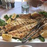 Отличный рыбный ресторан! Рядом с городом Lezhë:есть электронный указатель после заправки Petrol
