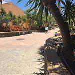 Oasis Village ภาพถ่าย