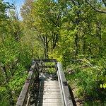 สวนกาตินิว ภาพถ่าย