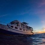 Dolphin Queen Andaman sea