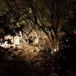 Cave Damianos Taverna ภาพถ่าย