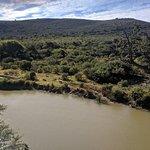 Fotografia de Shamwari Private Game Reserve Lodges