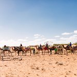 Lots of riding camels!