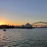 Royal Botanic Garden, sunset view from Lady Maquarie's Chair