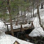 Diese Brücke mußte trotz Schnee überquert werden - es gelang