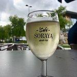 Soraya Photo