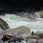 Beas river flowing