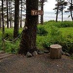 Foto de Iron Springs Resort