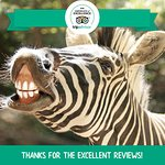 THANK YOU for being a Zoo supporter!