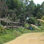 Photo of Phu Quoc Bee Farm