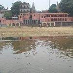 ภาพถ่ายของ Bodhi Tree