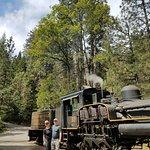 Foto de Yosemite Mountain Sugar Pine Railroad