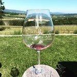 Penner-Ash Wine Cellars Foto