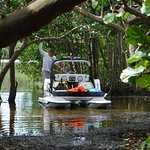Check out the mangrove tunnels