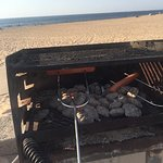 grilling hot dogs and smores!