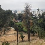 When June Gloom burns off, Runyon Canyon offers great views of Hollywood in Los Angeles.