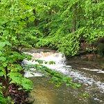 Falls after a heavy rain at Hemlock Creek Picnic Area