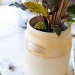 Vine Planter - Spring Exclusive