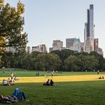 relaxation means Central Park in New York City
