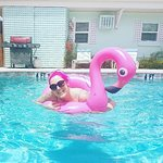 Haleys Motel and Resort