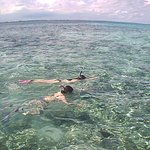 Snorkeling with Neptune's Cove!!