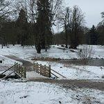 Lydiard Park-bild