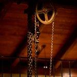 Guided tour & olive oil tasting - Vist Paragaea